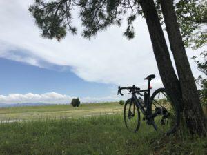 1人平日自転車部🚴♂️